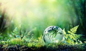 Markkinoinnin merkitys ympäristöprojekteissa